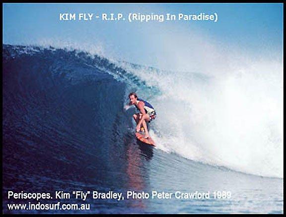 fly pericsopes